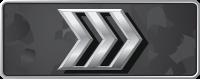 Звание Silver-III