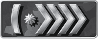 Звание Silver-Master